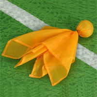 penalty_flag